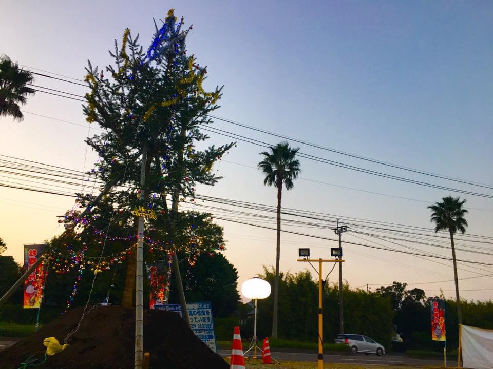 クリスマスツリーもグレードアップ♪【出張牡蠣小屋】牡蠣奉行in宮崎